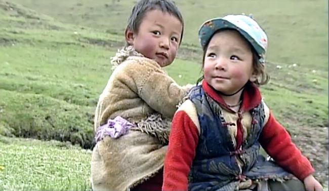 "Image extraite de ""Yartsa"" de Chenaktsang Dorje Tsering"
